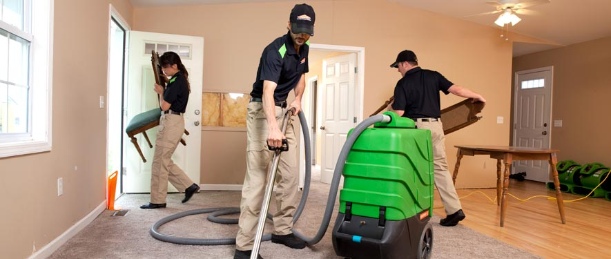 Arlington, TX cleaning services